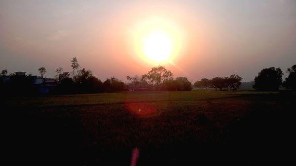 गंजहों के गाँव का लोकतन्त्र : उपन्यास अंश /व्यंग्य