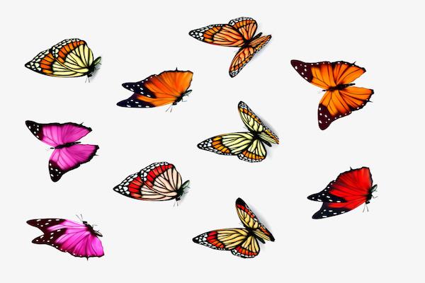 तितलियाँ बेचैन हैं: कहानी (सुभाष पंत)