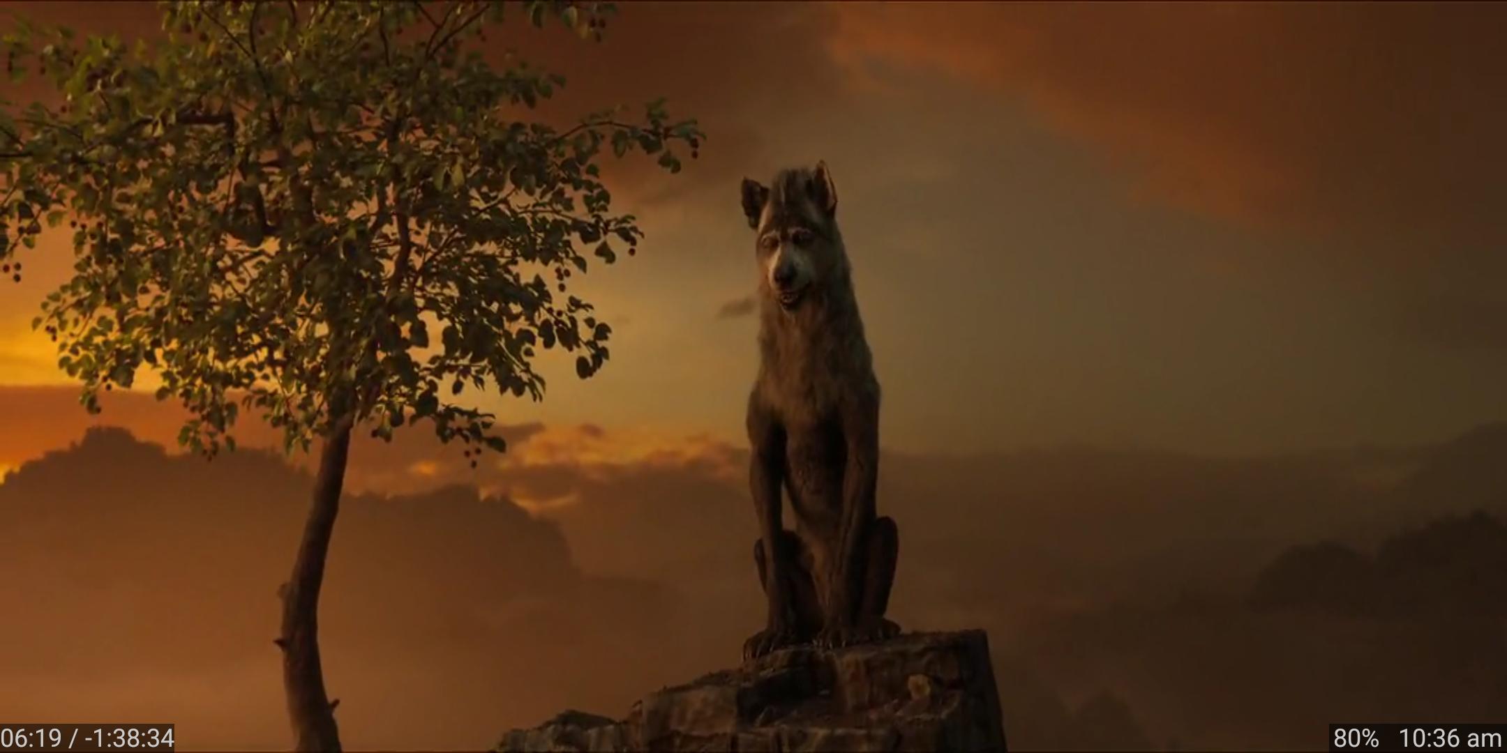 आदिवासियत को महसूस कराती जंगली कहानी